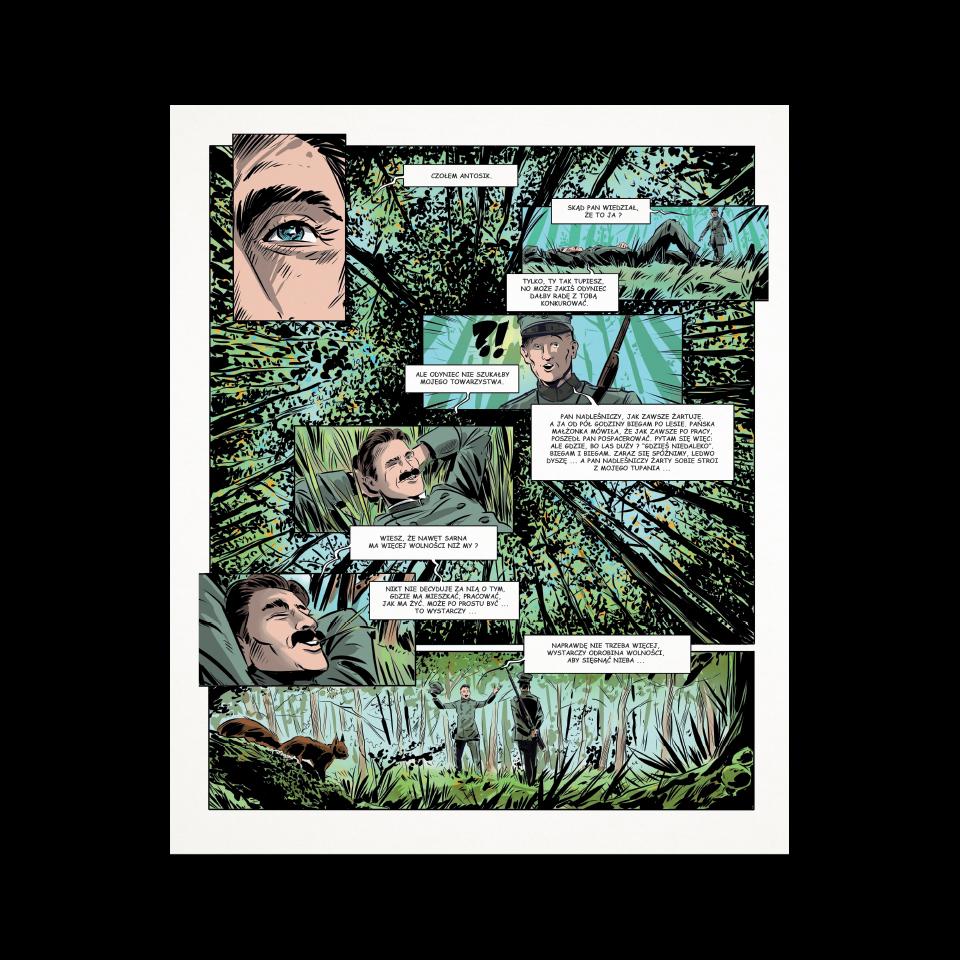 Galeria projektu Wolność w sercu lasu